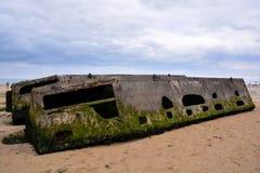 Los restos de la mora se abrigan en Normandía Francia, Europa foto de archivo libre de regalías