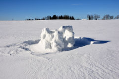 Los restos de un fuerte de la nieve creado por los niños debajo del sol brillante en el fondo del campo nevoso, del bosque y del  fotos de archivo libres de regalías