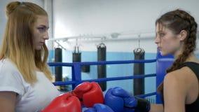 Los rivales femeninos fuertes en guantes se encuentran para el combate de boxeo en el anillo en club almacen de video