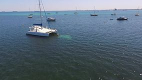 Los rodillos aúllan mostrando seagrass con los barcos amarrados en Rockingham WA Australia metrajes
