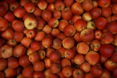 Los rote gesunde Äpfel - Fruchthintergrund Stockbilder