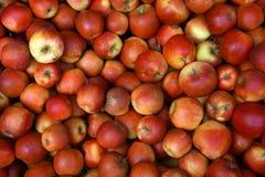 Los rote gesunde Äpfel - Fruchthintergrund Lizenzfreie Stockbilder