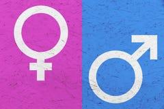 Los símbolos masculinos y femeninos Marte y Venus del género firman encima rosa y el fondo desigual azul de la textura Fotos de archivo libres de regalías