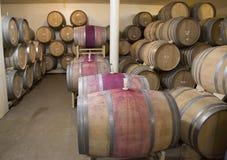 Los sótanos de Newton Winery en Napa Valley Fotografía de archivo