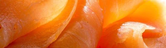 Los salmones se cierran para arriba, fondo en formato del panorama Imágenes de archivo libres de regalías