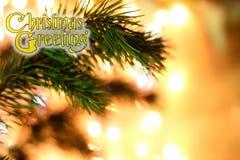 Los saludos adornados de la Navidad del texto diseñan la tarjeta de la enhorabuena del invierno Imagenes de archivo