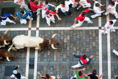 Los sanfermines, Pamplona Royalty Free Stock Photo