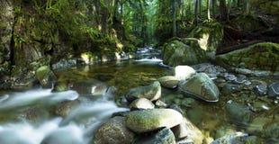 Los scapes escénicos hermosos de Vancouver y de Fraser Valley Scenic Backgrounds Fotos de archivo libres de regalías