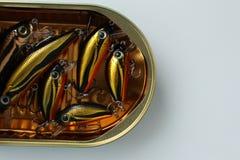 Los señuelos de los pescados en lata abierta parecen espadines Visión superior fotos de archivo