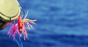 Los señuelos profundos de la pesca en mar - copie el espacio Fotografía de archivo