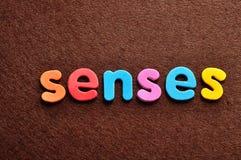 Los sentidos de palabra Fotos de archivo