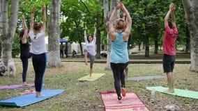 Los seres humanos practican la yoga en la estera, calentamiento de la aptitud en clase al aire libre, de la yoga al aire libre, f almacen de metraje de vídeo