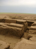 Los sightseengs de Turkmenistan - desee el árbol en ULUG Depe imagen de archivo libre de regalías