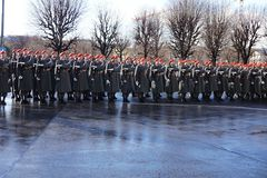 Los soldados del ejército austríaco en el guardia de la ventaja del honor pasando los vehículos del gobierno Una de las entradas  fotos de archivo