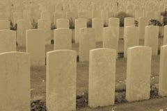 Los soldados del gran cementerio Flandes Bélgica de la guerra Fotografía de archivo libre de regalías