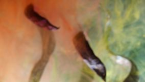 Los tallos secos de plantas envuelven las nubes de la pintura roja disolvieron el agua, humor del otoño almacen de metraje de vídeo