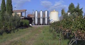 Los tanques con el vino Imágenes de archivo libres de regalías