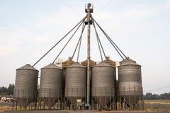 Los tanques de almacenamiento del grano en el campo foto de archivo libre de regalías