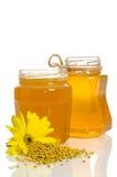 Los tarros de miel cerca de una pila de polen y de flor Imagenes de archivo