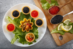 Los Tartlets llenaron de la ensalada roja y negra del caviar y del queso y del eneldo en la placa blanca contra fondo de madera r Fotos de archivo