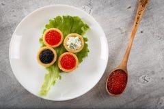 Los Tartlets llenaron de la ensalada roja y negra del caviar y del queso y del eneldo en la placa blanca contra fondo de madera r Imagenes de archivo