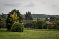 Los tejados rojos se dirigen el pequeño pueblo entre árboles Fotos de archivo libres de regalías