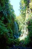 Los Tilos waterfall in nature reserve covered mostly by laurel forest in La Palma, Canary Islands, Spain stock image