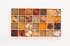 Los tipos de hierbas picantes con las especias aromáticas fueron insertados en la madera a Fotos de archivo libres de regalías