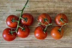 Los tomates cierran la visión Fotos de archivo libres de regalías