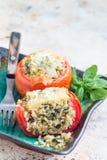 Los tomates cocidos rellenos con la quinoa y la espinaca remataron con queso derretido en la placa, vertical, espacio de la copia Foto de archivo libre de regalías