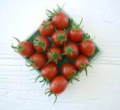 Los tomates de cereza del ciruelo se cierran para arriba Imagenes de archivo