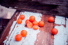 Los tomates de cereza, fotos del vintage, dispersaron los tomates Foto de archivo