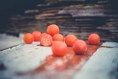 Los tomates de cereza, fotos del vintage, dispersaron los tomates Fotografía de archivo