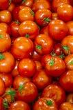 Los tomates en el estante de una tienda Imagen de archivo libre de regalías