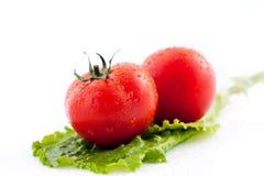 Los tomates frescos para la ensalada imagen de archivo libre de regalías