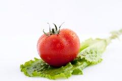 Los tomates frescos para la ensalada foto de archivo libre de regalías
