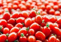 Los tomates maduros frescos rojos cierran los paprikas dulces ascendentes y verdes en el fondo en el mercado foto de archivo