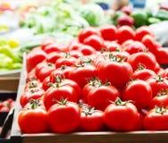 Los tomates maduros frescos rojos cierran los paprikas dulces ascendentes y verdes en el fondo en el mercado foto de archivo libre de regalías