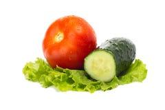 Los tomates y el pepino maduros en una ensalada hojean Fotos de archivo