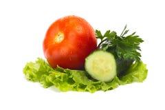 Los tomates y el pepino maduros en una ensalada hojean Imagenes de archivo
