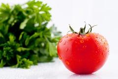 Los tomates y el perejil frescos fotografía de archivo