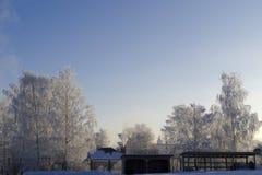 Los tops de los árboles helados y una cerca con una puerta por la mañana Fotografía de archivo