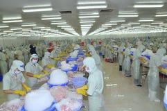 Los trabajadores están trabajando en una planta de tratamiento en Tien Giang, una provincia de los mariscos en el delta del Mekon Foto de archivo libre de regalías