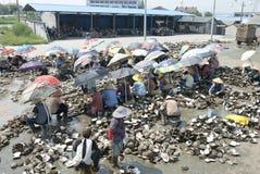 Los trabajadores rasgados hacia fuera aljofaran el mejillón Foto de archivo libre de regalías