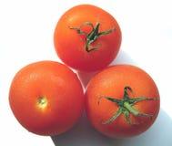 Los tres tomates Imágenes de archivo libres de regalías