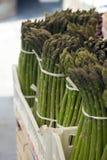 Los troncos de la alcachofa Fotos de archivo libres de regalías