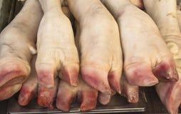 Los trotones del cerdo Fotos de archivo libres de regalías