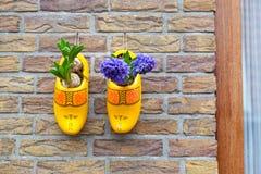 Los tubérculos de tulipanes en zapatos de madera amarillos adornan la pared de la casa fotos de archivo