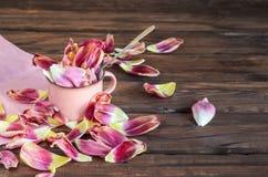 Los tulipanes del concepto del vajilla de la loza de la primavera florecen el fondo del rosa del color en colores pastel Tazas de imagen de archivo