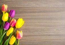 Los tulipanes en un fondo de madera, primavera florecen Imágenes de archivo libres de regalías